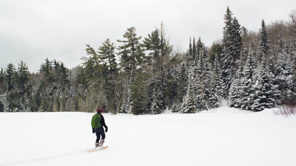 Snowshoeing in the McCormick Wilderness across White Deer Lake